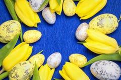 Pasqua felice I tulipani freschi gialli si trovano su un fondo blu con le uova di Pasqua immagini stock libere da diritti