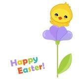 Pasqua felice Pollo sveglio di Pasqua che si siede su un fiore Fotografie Stock