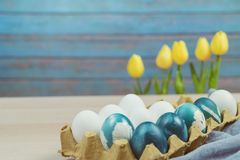 Pasqua felice, uova di Pasqua blu organiche con le uova bianche di colore aspetta la verniciatura, decorazioni di festa di pasqua Immagine Stock