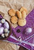 Pasqua ha colorato le uova ed i biscotti casalinghi fotografia stock libera da diritti