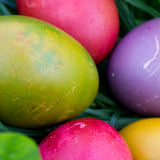 Pasqua ha colorato le uova nell'erba verde fotografie stock