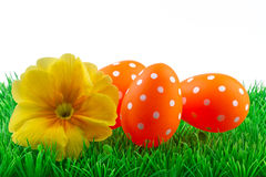 Pasqua ha colorato le uova su erba verde Immagini Stock