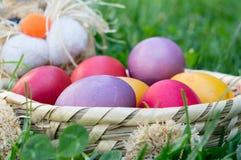 Pasqua ha colorato le uova in un canestro nell'erba fotografie stock