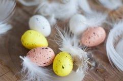 Pasqua, uova colorate, giallo, bianco, albero bianco, fondo bianco, feathersa, pollo eggs, uova di quaglia Immagini Stock Libere da Diritti