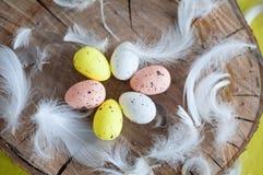 Pasqua, uova colorate, giallo, bianco, albero bianco, fondo bianco, feathersa, pollo eggs, uova di quaglia Immagine Stock