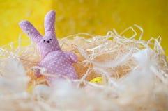 Pasqua, uova, uova del pollo, ha colorato le uova, fieno, uova bianche, Pasqua, festa, lepre del giocattolo, rosa, piselli, conig Immagini Stock