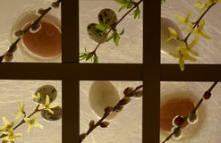 Pasqua - uova, salice purulento e forsythia. Fotografia Stock