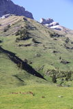 The pass of Aravis. Famous pass at the heart of the Alps Stock Photo
