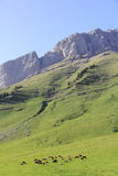 The pass of Aravis. Famous pass at the heart of the Alps Royalty Free Stock Photography