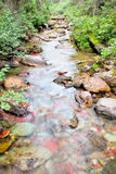 Pass Creek flowing through Glacier National Park Royalty Free Stock Image