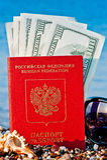 Pass mit Dollar auf dem Strand gegen das Meer Stockbild
