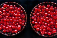 Passa de Corinto vermelha Imagem de Stock Royalty Free