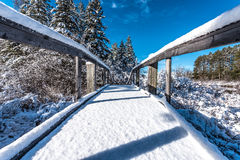 Passadiço coberto de neve, manhã do céu azul Fotos de Stock