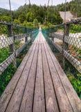 Passadiço da suspensão, fuga de Fundy, N.B. Fotografia de Stock Royalty Free