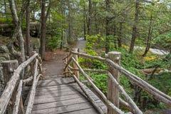 Passadiço de madeira Fotografia de Stock