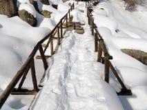 Passadiço de madeira nevado Imagem de Stock Royalty Free
