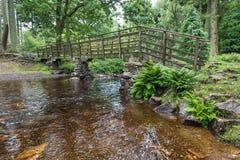 Passadiço e passeio de Dalegarth às cachoeiras Fotos de Stock