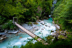 Passadiço sobre o rio Foto de Stock Royalty Free