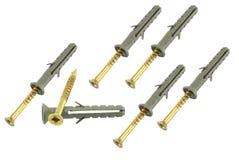 Passador com screw#03 Foto de Stock