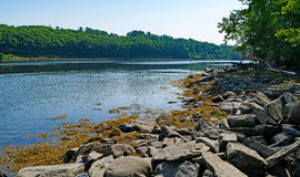 Passagassawakeag-Fluss in Belfast, Maine Stockbilder