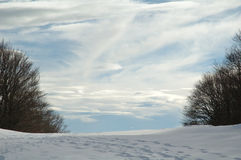 Passage. Snowshoes trekking in french Jura Royalty Free Stock Images