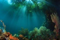 The Passage. Raja Ampat, West Papua, Indonesia Royalty Free Stock Image