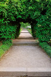 Tunnel passage in the garden Stock Photos