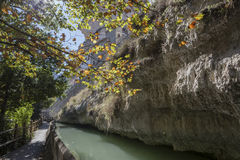 Passage along the river Jucar during autumn, Alcala of t Stock Photos
