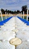 Passage couvert à la plage Images stock