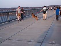 Passage couvert au-dessus de Hudson Poughkeepsie NY Images stock