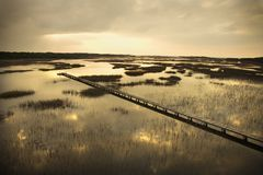 Passage couvert au-dessus de marais. Images stock