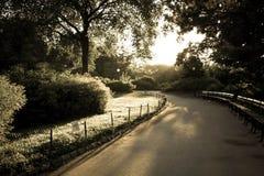 Passage couvert au parc avec la lumière du jour dans le vieux style de vintage Images stock