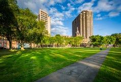 Passage couvert au vert et aux bâtiments de New Haven dedans en centre ville, dans nouveau image stock