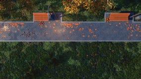 Passage couvert avec les bancs vides dans la vue supérieure de parc d'automne banque de vidéos
