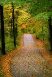 Passage couvert d'automne Photos stock