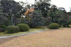 Passage couvert dans le jardin Photo libre de droits