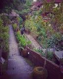 Passage couvert de façade d'une rivière, Ubud, Bali image stock