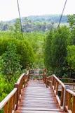 Passage couvert de Forest Wooden de palétuvier de baie de Thung Kha Chumphon, Thaïlande image libre de droits