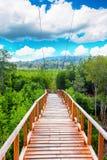 Passage couvert de Forest Wooden de palétuvier de baie de Thung Kha Chumphon, Thaïlande images stock