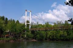 Passage couvert de Forest Wooden de palétuvier de baie de Thung Kha Chumphon, Thaïlande images libres de droits