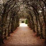 Passage couvert de jardin photos stock