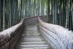 Passage couvert en bambou Photos libres de droits