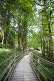 Passage couvert en bois Photo stock