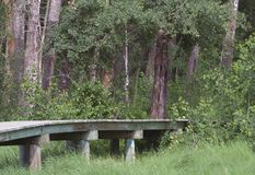 Passage couvert en bois Image libre de droits