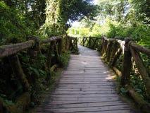 Passage couvert en bois Photo libre de droits