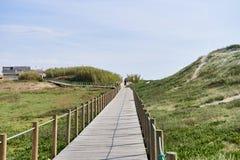 Passage couvert en bois au-dessus de la dune photographie stock libre de droits