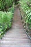 Passage couvert en bois avec la balustrade dans la forêt Image libre de droits