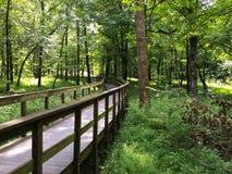 Passage couvert en bois en parc national de caverne gigantesque Photo stock
