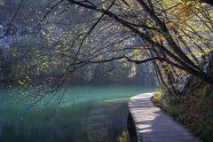 Passage couvert en bois le long du rivage du lac et des arbres d'automne Pli Images stock