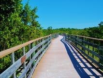 Passage couvert en bois par les marais Photo libre de droits